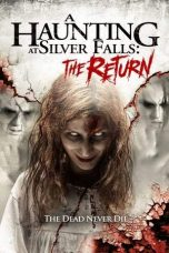 A Haunting at Silver Falls The Return